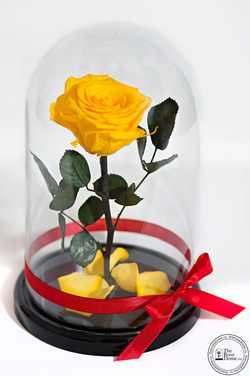 Жёлтая роза в колбе